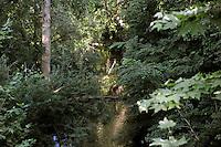 Il fiume Sacco è considerato uno dei fiumi più inquinati d'Italia a causa dei versamenti di rifiuti chimici industriali..Sacco River is considered one of the most polluted rivers in Italy because of industrial chemical waste spills..