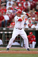 June 18, 2008: Cincinnati Reds first baseman Joey Votto (19) at The Great American Ballpark in Cincinnati, OH.  Photo by: Chris Proctor/Four Seam Images