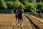 MAY13, 2021:  Ram gallops in preparation for the Preakness Stakes at  Pimlico Race Course in Baltimore, Maryland on May 13, 2021. EversEclipse Sportswire/CSM