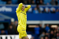 Jordan Pickford of Everton during the Premier League match between Everton and West Ham United at Goodison Park on October 19th 2019 in Liverpool, England. (Photo by Daniel Chesterton/phcimages.com)<br /> Foto PHC/Insidefoto <br /> ITALY ONLY