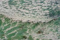 Surf, Central Coast 2