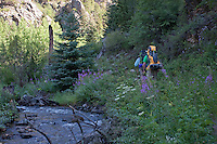 Hiking to Lost Lake Campground - Rocky Mountain National Park