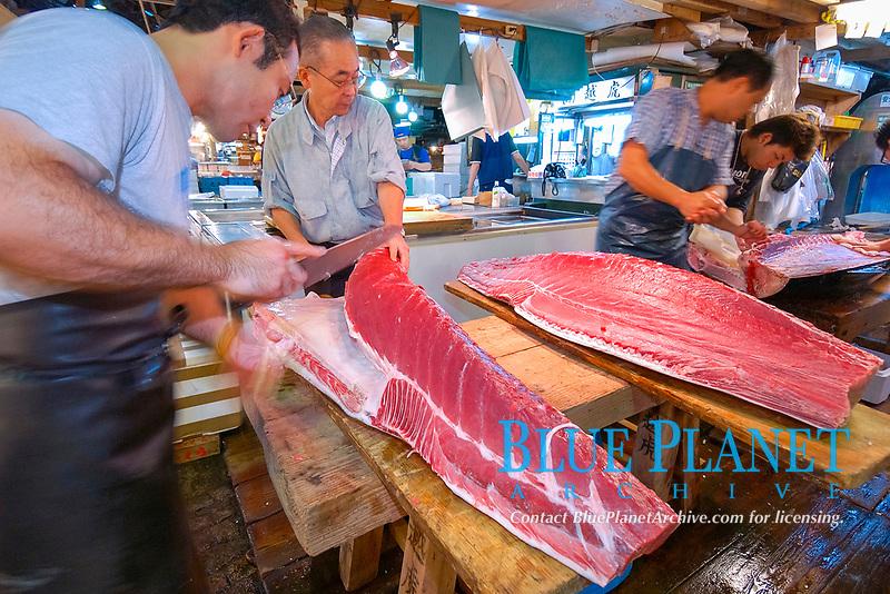 tuna retailer cuts bluefin tuna, Thunnus thynnus, Tsukiji Fish Market, Tokyo, Japan