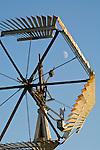 Farm with white barn and historical Demster vaneless wooden windmill, Cass Co., Nebraska
