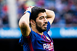 Luis Suarez of FC Barcelona reacts during the La Liga 2017-18 match between FC Barcelona and RC Celta de Vigo at Camp Nou Stadium on 02 December 2017 in Barcelona, Spain. Photo by Vicens Gimenez / Power Sport Images3