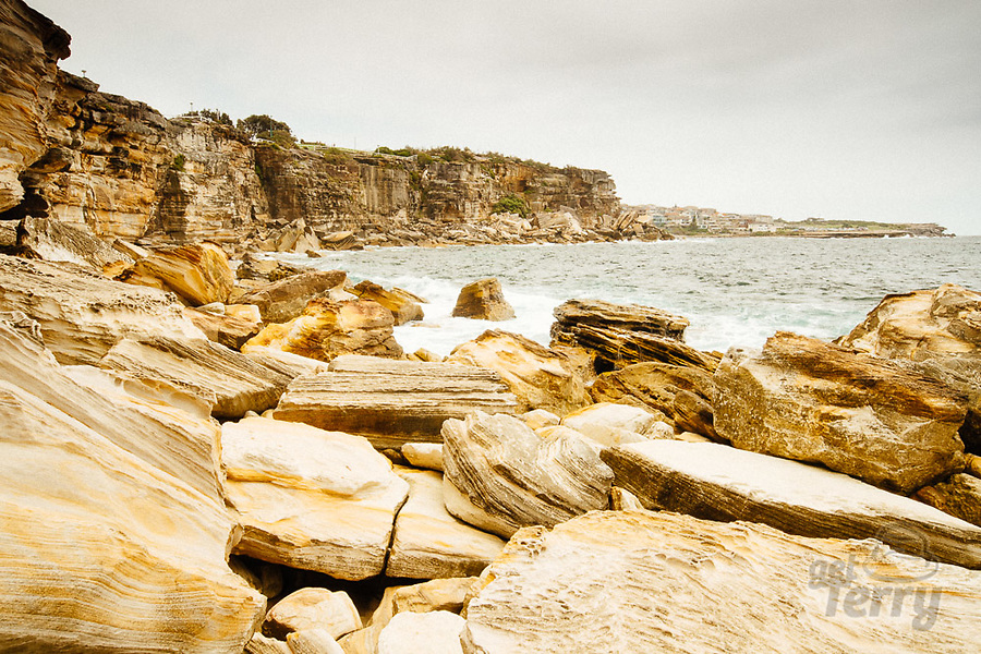 Image Ref: CA1064<br /> Location: Coogee<br /> Date of Shot: 29.01.20