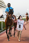 March 27, 2021: JALEN JOURNEY, #6 in the post parade for the Golden Shaheen on Dubai World Cup Day, Meydan Racecourse, Dubai, UAE. Shamela Hanley/Eclipse Sportswire/CSM