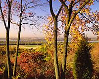 Sunrise light on a hillside in fall color above the Illinois River; Pere Marquette State Park, IL
