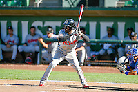 Michael Beltre (36) of the Billings Mustangs at bat against the Ogden Raptors in Pioneer League action at Lindquist Field on August 14, 2016 in Ogden, Utah. Ogden defeated Billings 15-9. (Stephen Smith/Four Seam Images)