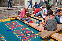 Antigua, Guatemala.  Working on an alfombra (carpet) of colored sawdust,  pine needles, and other traditional materials in advance of the passage of a procession during Holy Week, La Semana Santa.  The alfombra will be finished only a couple of hours before the passage of the procession, after which the remains will be quickly swept away by municipal street sweepers.