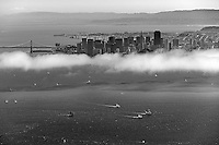 aerial view above sailboat racing San Francisco bay San Francisco skyline and bay bridge in background