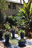 Europe/France/Midi-Pyrénées/46/Lot/Cahors: Le jardin mauresque<br /> Rue du Petit Mot fait partie des jardins secrets de Cahors