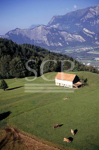 Ragaz, Switzerland. Aerial view of an Alpine rural scene.
