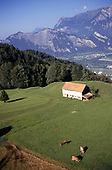 Ragaz, Switzerland. Aerial view of an Alpine rural scene.