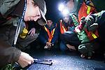Santa Cruz Long-toed Salamander (Ambystoma macrodactylum croceum) biologist Rachel Tertes measuring salamander on night survey with volunteers, Monterey Bay, California