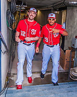 28 February 2017: Washington Nationals catchers Matt Wieters (left) and Pedro Severino step up from the tunnel and into the dugout prior to the inaugural Spring Training game between the Washington Nationals and the Houston Astros at the Ballpark of the Palm Beaches in West Palm Beach, Florida. The Nationals defeated the Astros 4-3 in Grapefruit League play. Mandatory Credit: Ed Wolfstein Photo *** RAW (NEF) Image File Available ***
