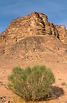 Wadi Rum in southern Jordan<br />