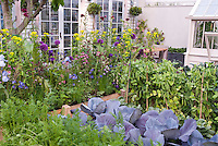Vegetables, carrots, peas, cabbages, flowers, ireises, house, patio, greenhouse, in lush growing