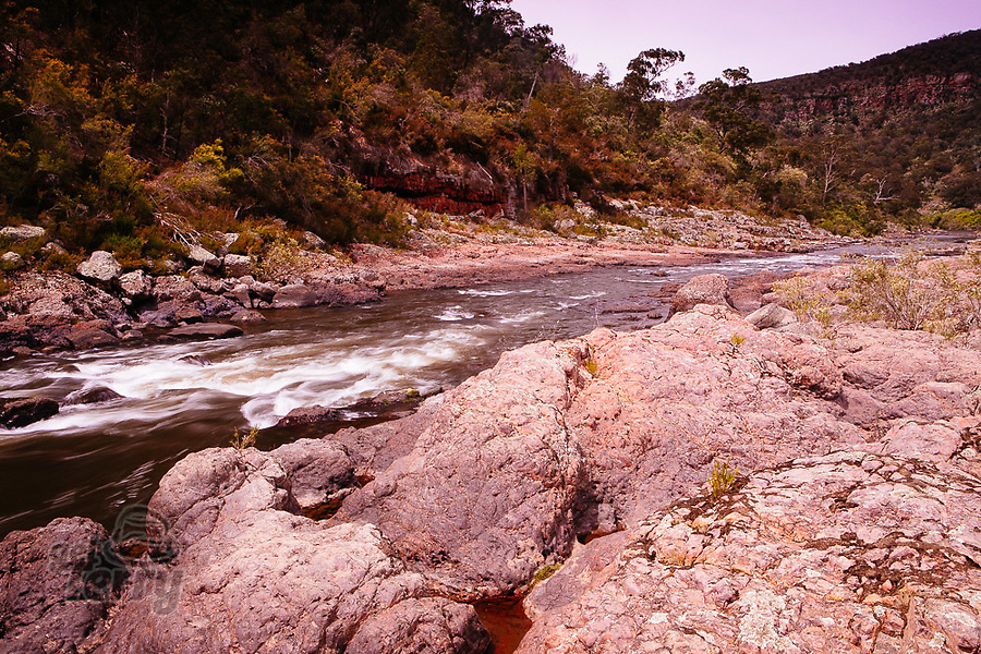 Image Ref: CA1216<br /> Location: Mitchell River National Park, Victoria<br /> Date of Shot: 04.12.20
