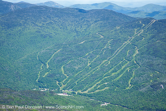 Wildcat Ski Mountain from the Alpine Garden Trail in the White Mountains of New Hampshire USA during the summer months.
