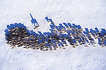 ONLINE ARE RESTRICTED TO A MAXIMUM OF 10 IMAGES  FROM THIS SET TO RUN ALONGSIDE THE STORY<br /> <br /> Pictured: Taken from by Drone:  Mongolian nomads' migration in Altai, Mongolia.<br /> <br /> Amazing drone shots show a Mongolian tribesman sledding across a frozen lake, the skyscrapers of Dubai shrouded in mist and a fluorescent blue stream winding its way through the ice of Greenland.  Other images show fields of flowers in Italy and a herd of livestock being guided through the desert.<br /> <br /> The patterned pictures - which resemble modern art - were captured by photographer Alessandra Meniconzi from Lugano, Switzerland.  SEE OUR COPY FOR DETAILS.<br /> <br /> Please byline: Alessandra Meniconzi/Solent News<br /> <br /> © Alessandra Meniconzi/Solent News & Photo Agency<br /> UK +44 (0) 2380 458800