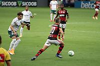 BRASÍLIA, DF, 21.01.2021: FLAMENGO-PALMEIRAS – Partida entre Flamengo e Palmeiras pela 31ª rodada do Campeonato Brasileiro 2020, no estádio Mané Garrincha em Brasília, nesta quinta-feira (21). (Foto: Anderson Papel/Código19)
