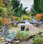 Backyard Stream, a man made water feature in private garden professionally landscaped.
