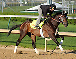 April 23, 2014 Commanding Curve and rider Emerson Chavez gallop at Churchill Downs.  He is trained by Dallas Stewart and owned by West Point Thoroughbreds. He finished third in the Louisiana Derby.
