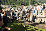 Langholm Common Riding 2016. Crowds watch as horses charge gallop up steep hill, Kirk Wynd.