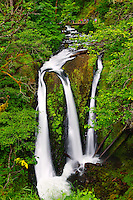 Triple Falls along the Horsetail Falls Trail (#438) Columbia River Gorge National Scenic Area, Oregon