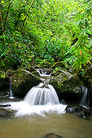 A scenic waterfall is one of many along the  Maunawili Hiking trail, windward Oahu.