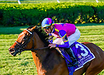 September 04, 2021: War Like Goddess #3, ridden by jockey Julien Leparoux win the Grade 1 Flower Bowl Stakes on the turf at Saratoga Race Course in Saratoga Springs, N.Y. on September 4th, 2021. Dan Heary/Eclipse Sportswire/CSM