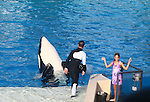 The killer whale (Orcinus orca), also referred to as the orca whale or orca, and less commonly as the blackfish or grampus, is a toothed whale belonging to the oceanic dolphin family. Killer whales are found in all oceans, from the frigid Arctic and Antarctic regions to tropical seas. Killer whales as a species have a diverse diet, although individual populations often specialize in particular types of prey.