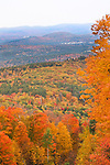 Fall foliage in the mountains of New Hampshire.
