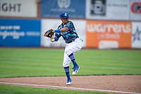 Ogden Raptors third baseman Kenneth Betancourt (9) prepares to make a throw to first base during a Pioneer League game against the Billings Mustangs at Lindquist Field on August 17, 2018 in Ogden, Utah. The Billings Mustangs defeated the Ogden Raptors by a score of 6-3. (Zachary Lucy/Four Seam Images)