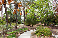 Landscape Southern California Style - water wise demonstration garden by Western Municipal Water District, Riverside California