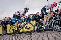 World Champion Peter Sagan (SVK/Bora-Hansgrohe) right behind Sep Vanmarcke (BEL/Education First-Drapac) up the last ascent of the Paterberg<br /> <br /> 102nd Ronde van Vlaanderen 2018 (1.UWT)<br /> Antwerpen - Oudenaarde (BEL): 265km