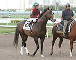Flat Out post parade. Graybar with Edgar Prado wins the 57th running of the Grade 1 Donn Handicap for 4 year olds & up, going 1 1/8 mile, at Gulfstream Park.  Trainer - Todd Pletcher.  Owner - Twin Creek Racing Stable