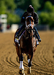 MAY13, 2021: Iced Latte gallops in preparation for the Black Eyed Susan Stakes at Pimlico Race Course in Baltimore, Maryland on May 13, 2021. EversEclipse Sportswire/CSM
