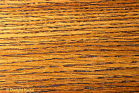 TT16-006a  Wood section -radial, showing grains in wood