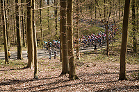 peloton up La Houppe<br /> <br /> 62nd E3 BinckBank Classic (Harelbeke) 2019 <br /> One day race (1.UWT) from Harelbeke to Harelbeke (204km)<br /> <br /> ©kramon