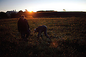Charleston, South Carolina<br /> October 24, 2013<br /> <br /> At 5am chef Matt Jennings, from the restaurant Farmstead, in Providence, Rhode Island, and Andrea from McCrady's restaurant in Charleston forage for wild beach onions for the big dinner that evening.