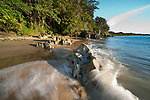 Waves lapping sandy beach with lowland rainforest at the shore. Masoala National Park, Madagascar.