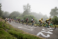 GC contenders following eachother closely up the very steep section (+16%) of the Mur de Péguère (Cat1/1375m/9.3km/7.9%): yellow jersey / GC leader Julian Alaphilippe (FRA/Deceuninck - QuickStep), World Champion Alejandro Valverde (ESP/Movistar), defending Tour champion Geraint Thomas (GBR/Ineos) & white jersey / best young rider Egan Bernal (COL/Ineos)<br /> <br /> Stage 15: Limoux to Foix (185km)<br /> 106th Tour de France 2019 (2.UWT)<br /> <br /> ©kramon