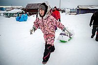12-year old Jamie McGinty volunteers to haul John Baker's drop bags to his team at the Kaltag checkpoint during the 2017 Iditarod on Sunday morning March 12, 2017.<br /> <br /> Photo by Jeff Schultz/SchultzPhoto.com  (C) 2017  ALL RIGHTS RESERVED