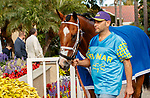 DEL MAR, CA  JULY 31:#3 CZ Rocket, ridden by Florent Geroux, in the paddock before the Bing Crosby Stakes (Grade l) Breeders Cup Win and You're In Sprint Division on July 31, 2021 at Del Mar Thoroughbred Club in Del Mar, CA. (Photo by Casey Phillips/Eclipse lSportswire/CSM)