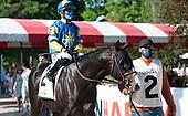 9th Jim Dandy Stakes - Mystic Guide