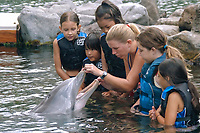 Girls and bottlenose dolphin (Tursiops truncatus), Oahu, Hawaii, USA (North Pacific Ocean)