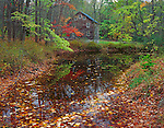 Delaware Water Gap National Recreation Area, NJ<br /> Millbrook Mill reflection on a small pond covered with autumn leaves - Mllbrook Village historic site