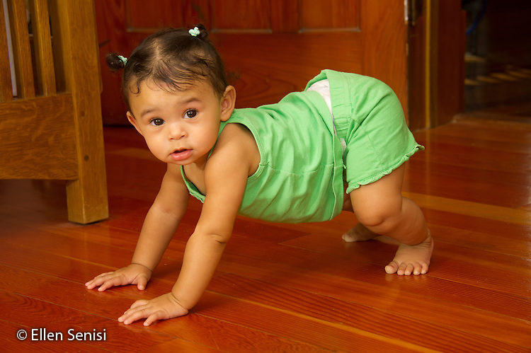 MR / Schenectady, NY. Infant (girl, 9 months, African American & Caucasian) at crawling stage pushes herself up and supports her body weight with her arms and legs. MR: Dal4. ID: AL-HD. © Ellen B. Senisi